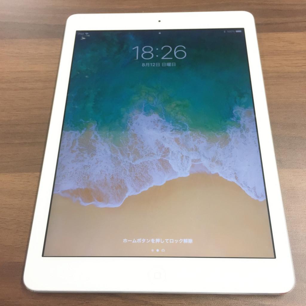 iPad 本体